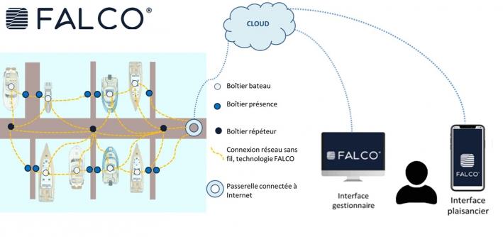 la connexion Falco